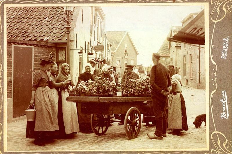 Bloemenventer, Hoofdstraat (W vd Haak)